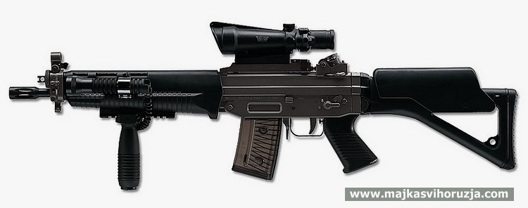 Swiss Arms SG 551 SWAT with accessories